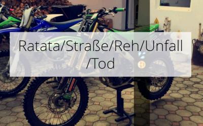 Ratata / street / deer / accident / death